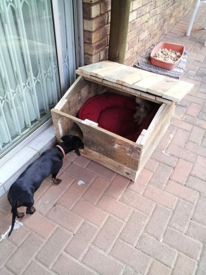 7 DIY Dog House From Pallets - How to Build Dog House