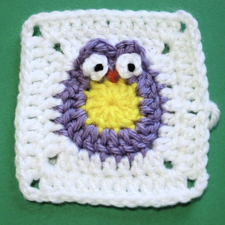 Owl Blanket for a Baby Bird