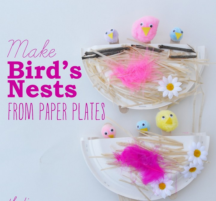 A Birds Nest Craft from Paper Plates