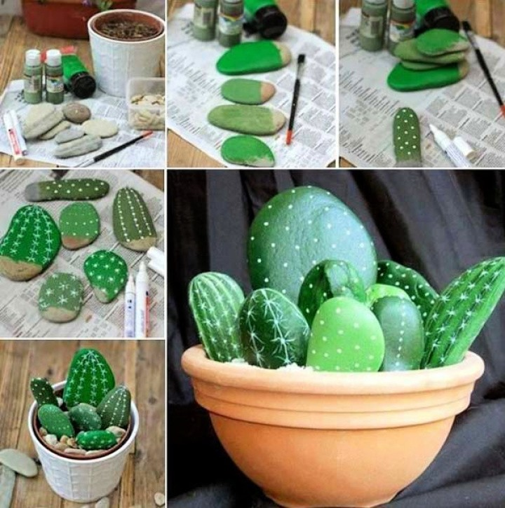 Cactus Are in Your Garden