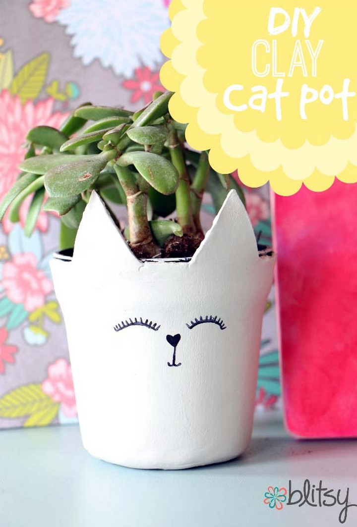 DIY Cats and Plants For Home Decor