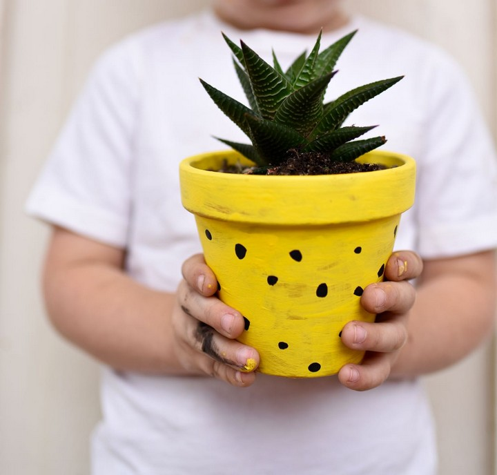DIY Pineapple Planters Crafts