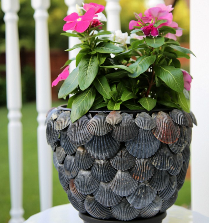 DIY a seashell plant pot for your Summer garden update