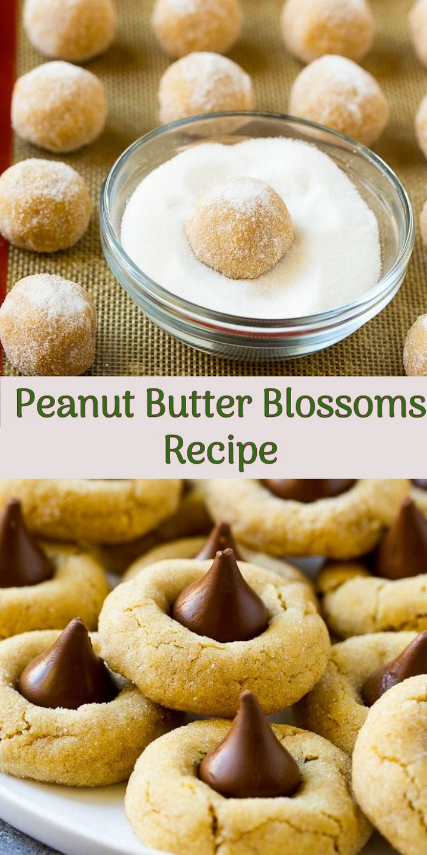 peanut butter cookies best, peanut butter cookies homemade, peanut butter cookies soft, recipe for peanut butter fudge, peanut brittle recipe, peanut sauce recipe, recipe for peanut sauce, recipe for peanut butter balls, recipe peanut butter balls, peanut butter recipe, peanut sauce recipe thai, recipe for peanut butter blossoms, recipe for peanut butter no bake cookies, peanut cluster recipe, peanut brittle recipe microwave, recipe peanut butter rice krispie treats, chicken with peanut butter recipe,