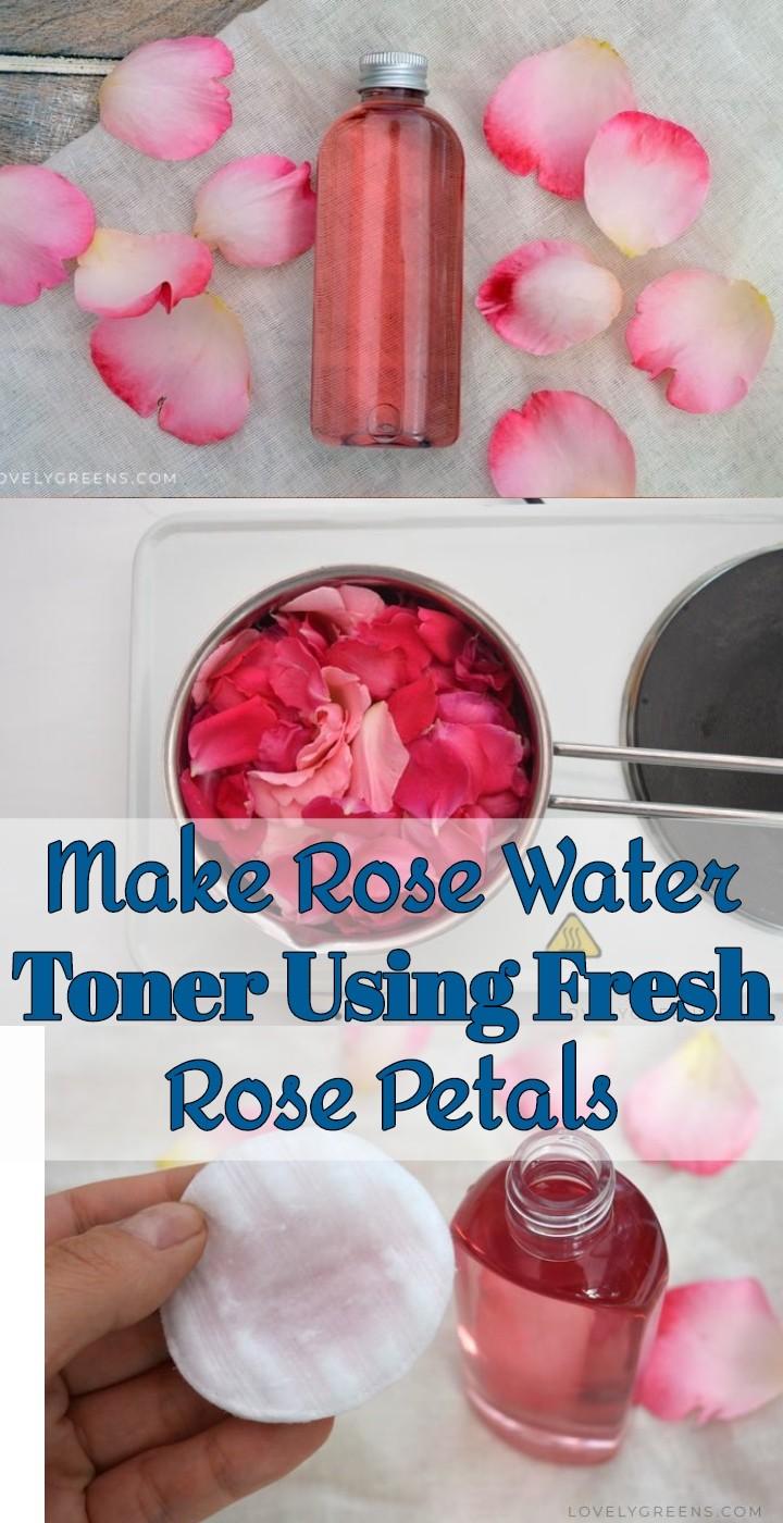 Make Rose Water Toner Using Fresh Rose Petals