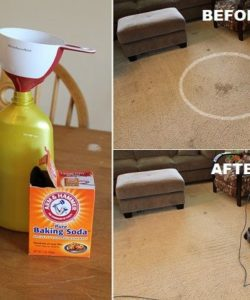 Clean Carpet DIY - DIY Carpet Cleaning Without A Machine