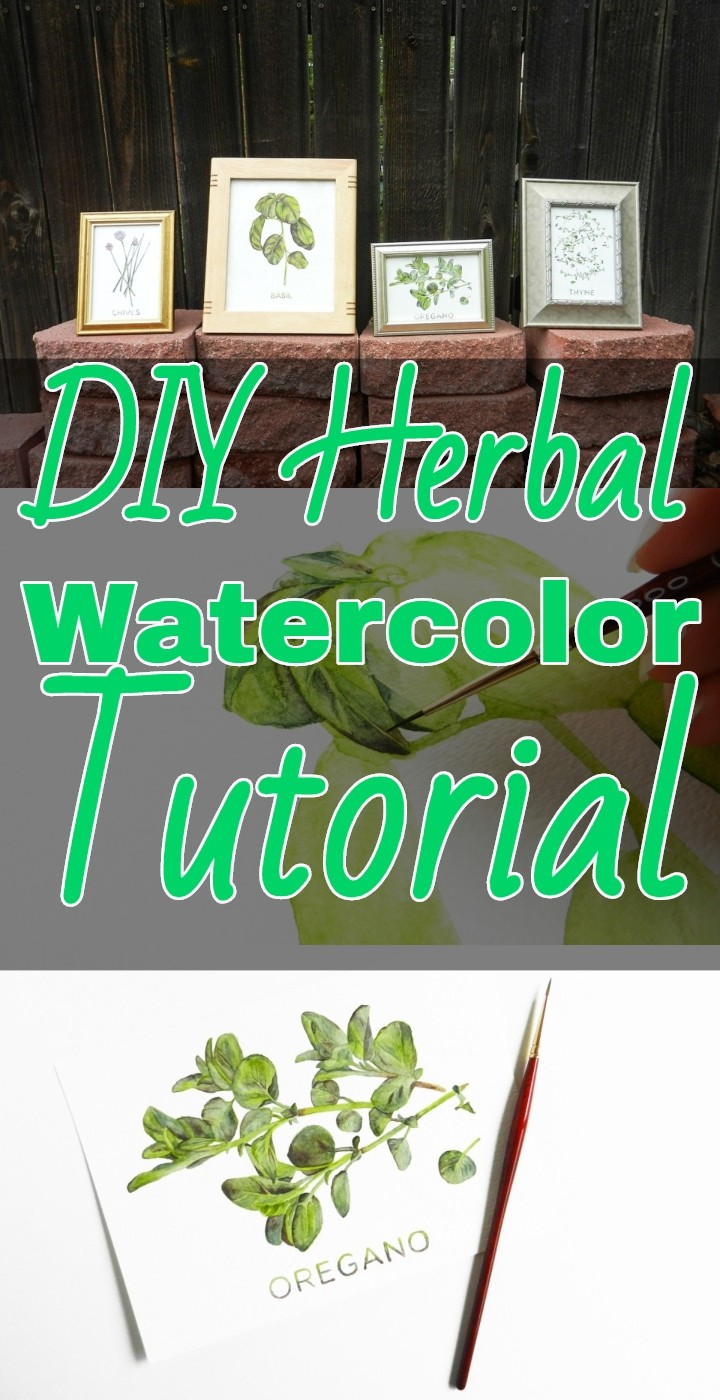 DIY Herbal Watercolor Tutorial