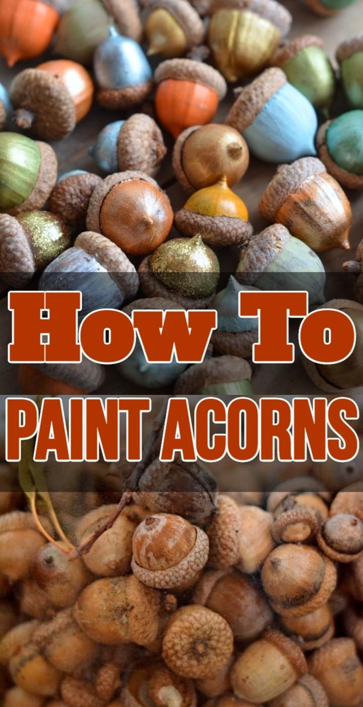How To Paint Acorns