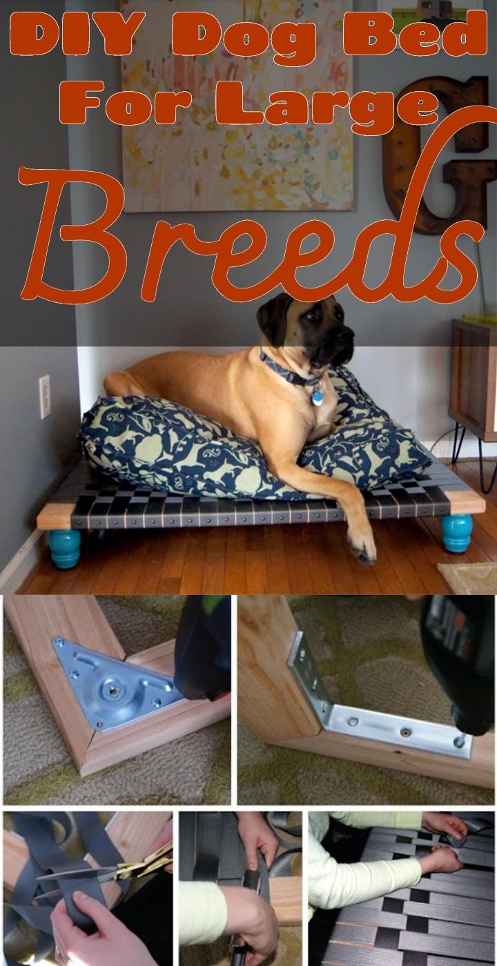 DIY Dog Bed For Large Breeds