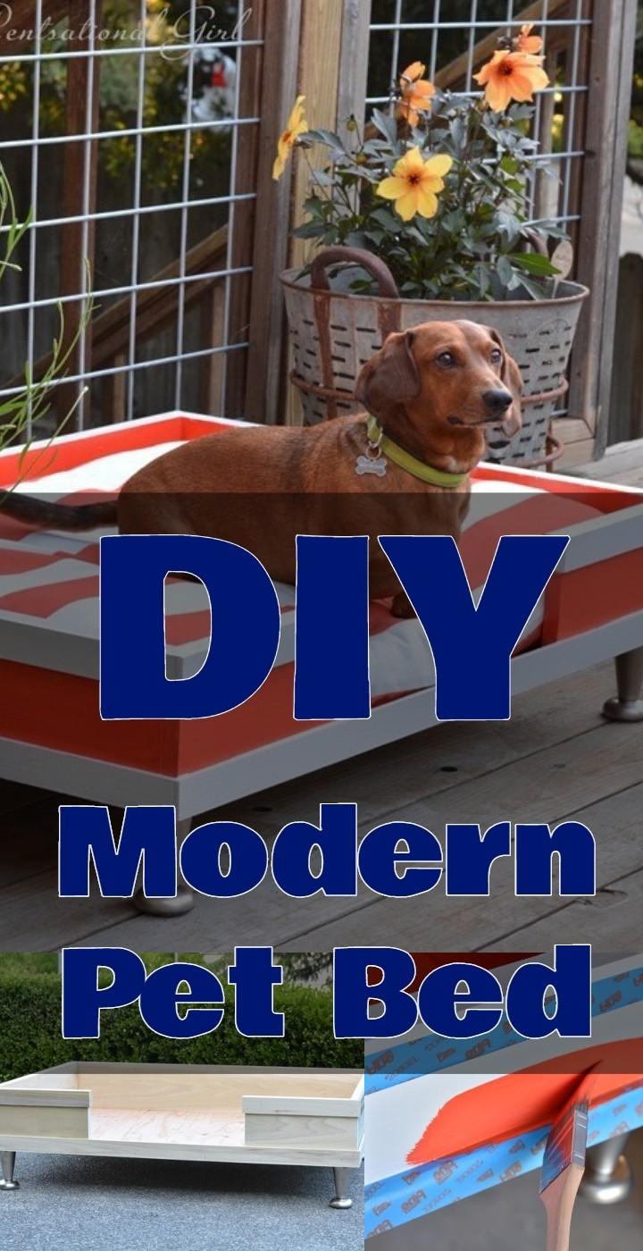 DIY Modern Pet Bed